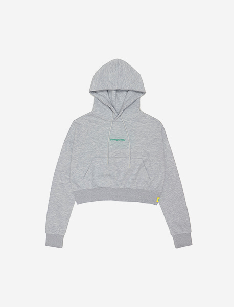 DGL CROP HOODIE - GREY brownbreath