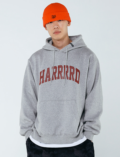 HARRRRD HOODIE - GREY brownbreath